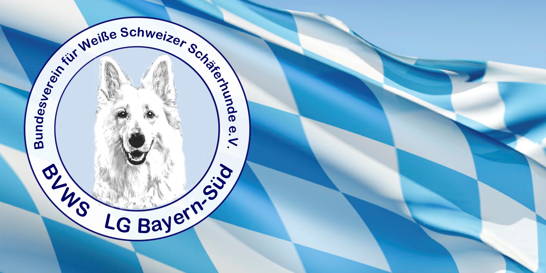 BVWS Landesgruppe Bayern Süd